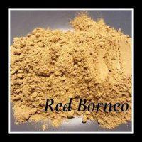 RedBorneo