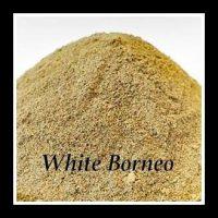 WhiteBorneo